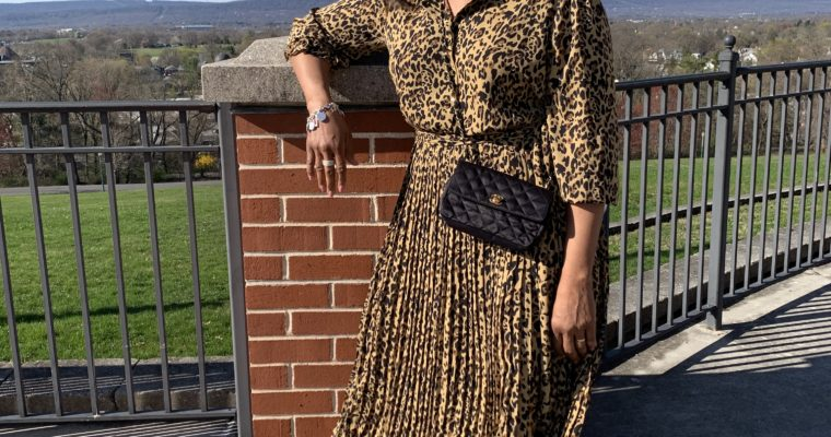 Leopard Print Dress with Pleated Skirt